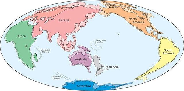 زيلانديا Zealandia