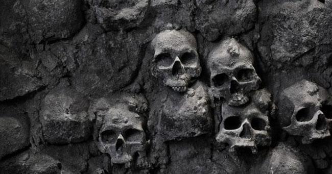 ماذا سيحدث عند أنقراض البشر