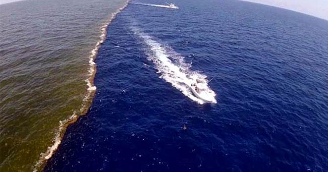 12 معلومة مثيرة لا تعرفها عن المحيطات